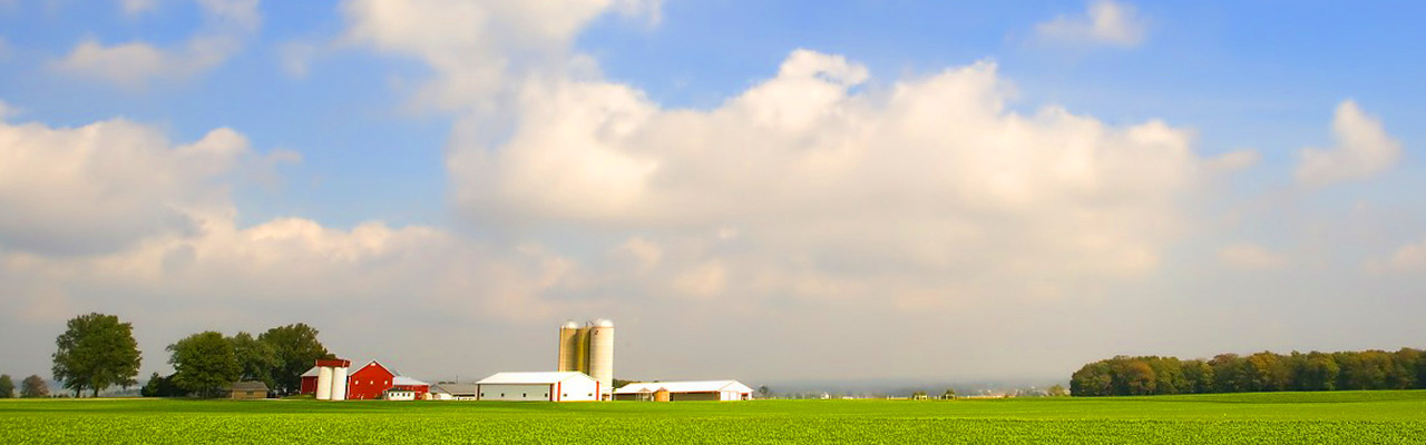 Farmer's land, home and property
